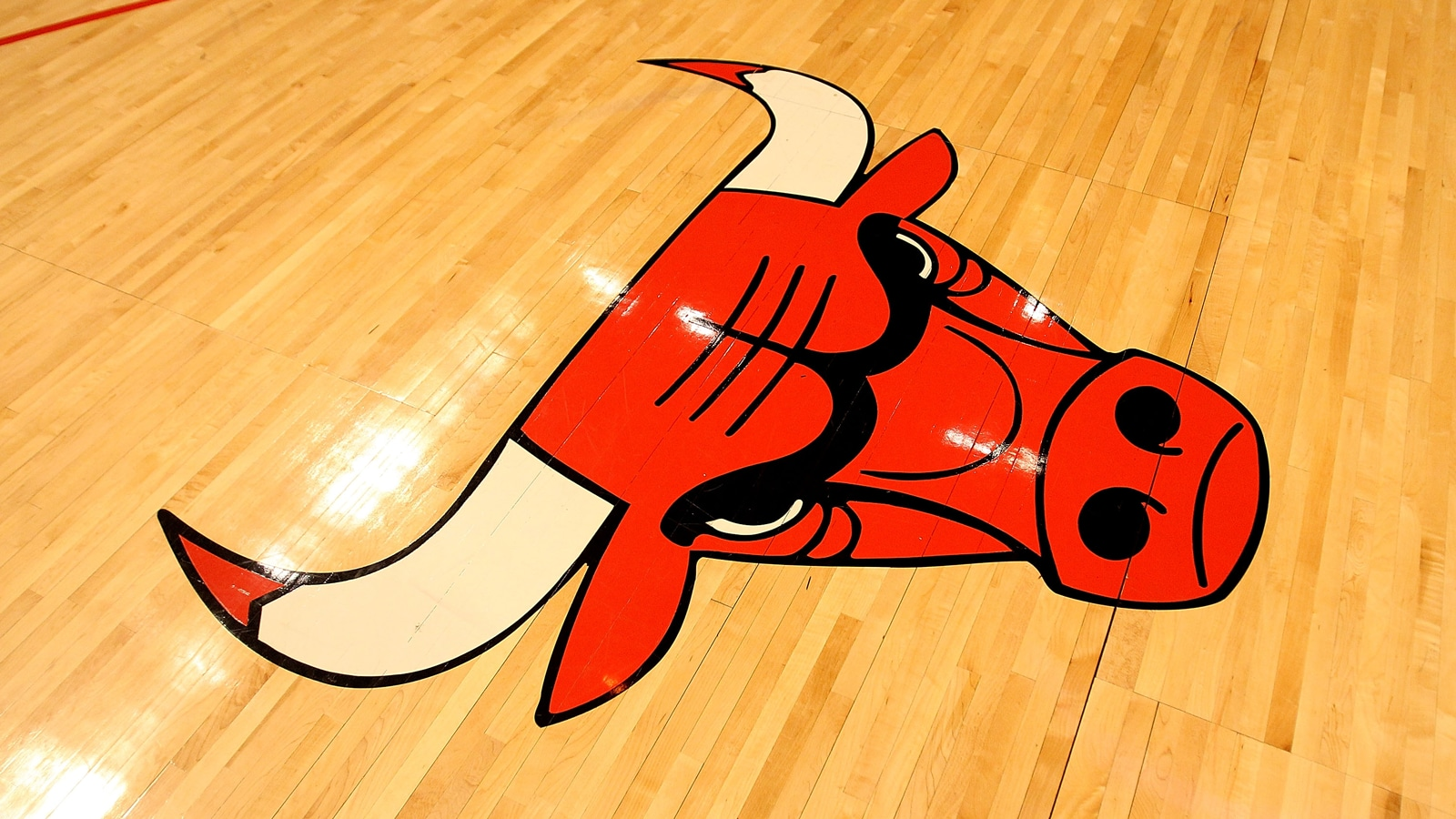 Chicago Bulls logo at the United Center