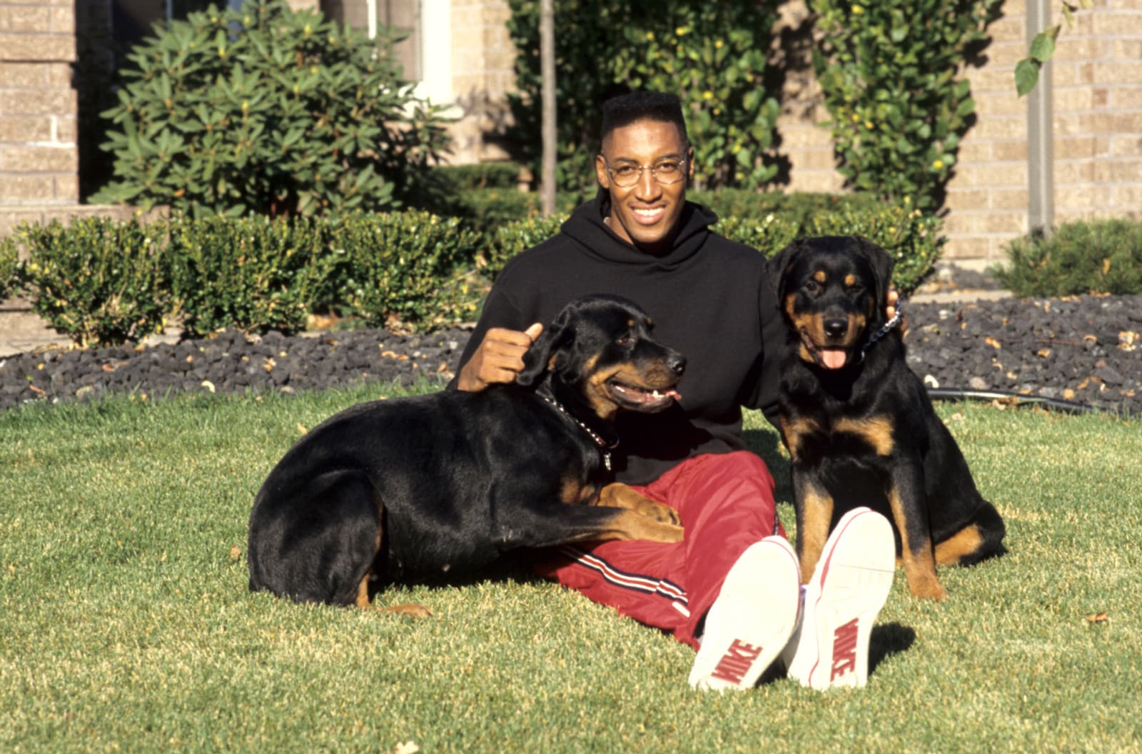 Pippen sitting with two dogs